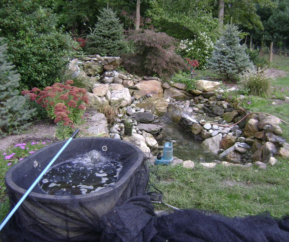 Pond cleaning contractor - Denver metro area - Art Of The Yard